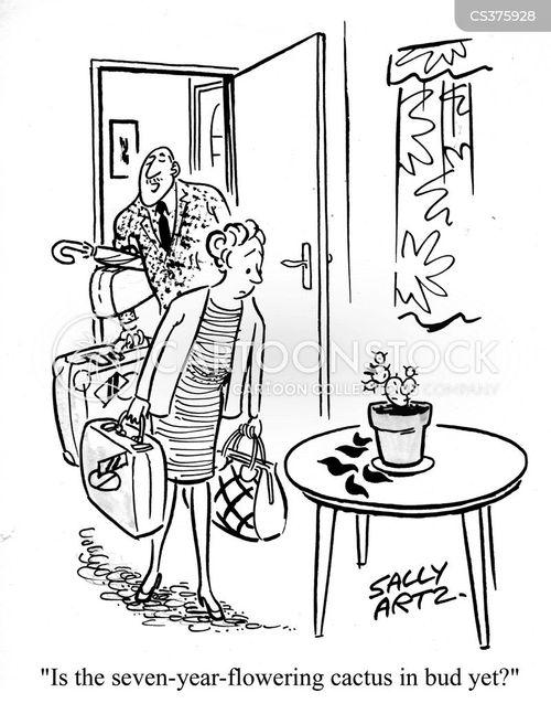 bud cartoon