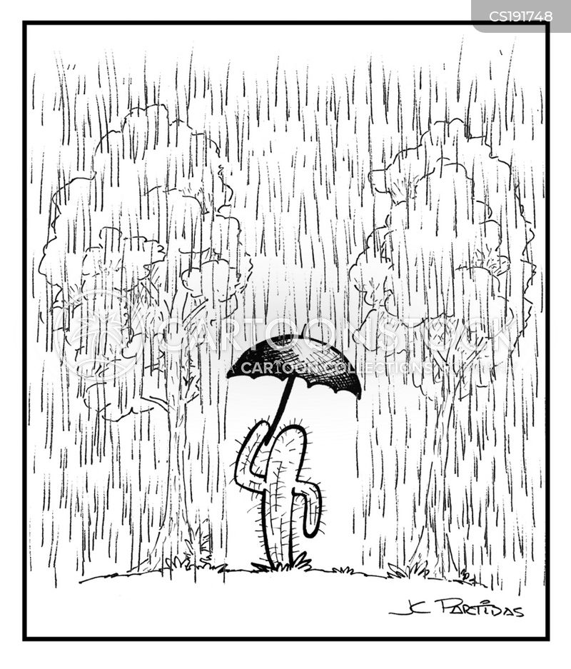 rainy season cartoon