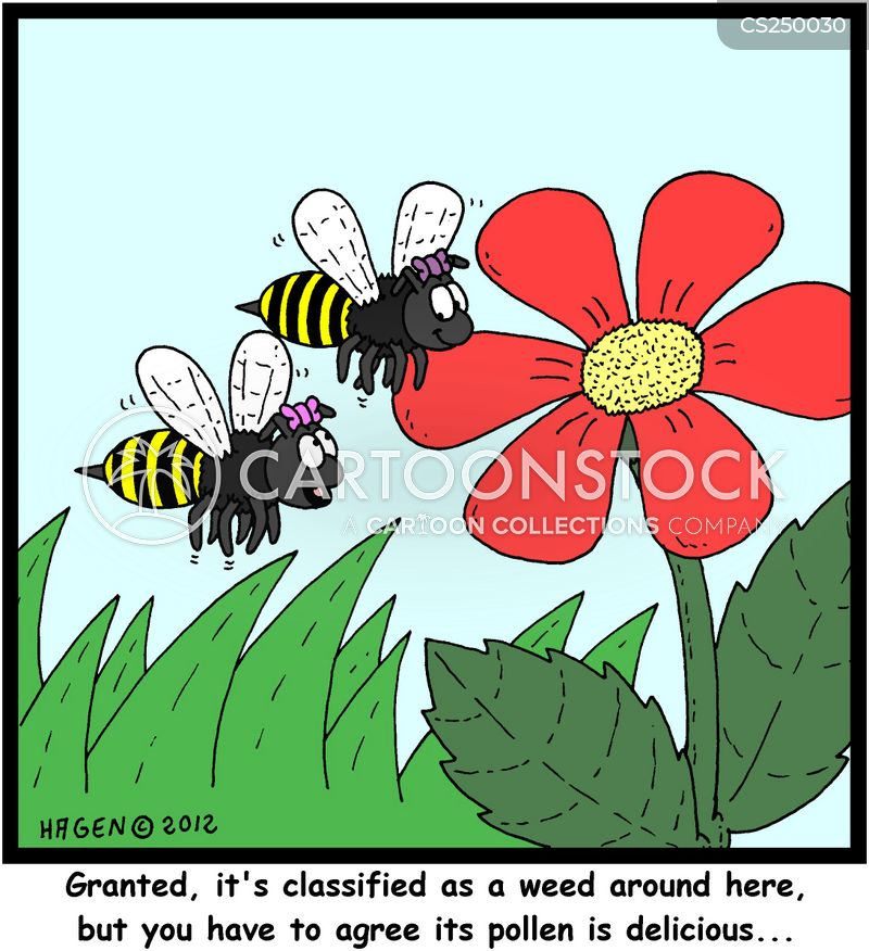 pollinating cartoon