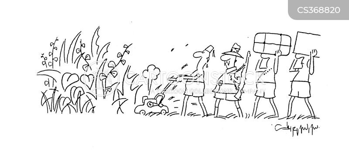 taming cartoon