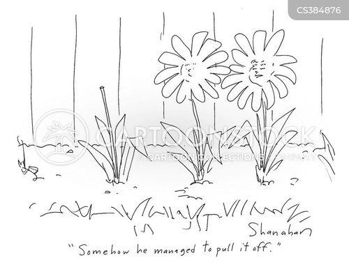 flower head cartoon