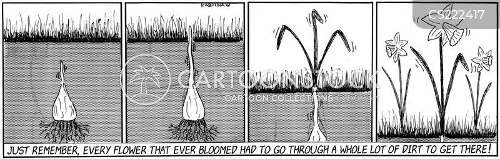 growing plant cartoon