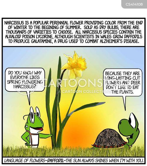 spring flower cartoon