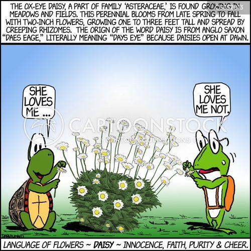 daisies cartoon