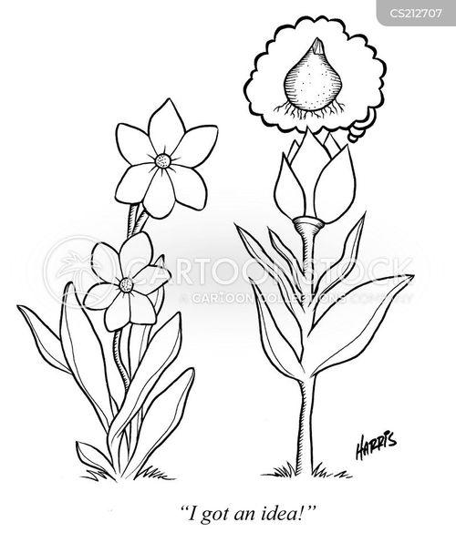 petal cartoon