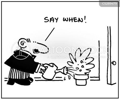 say when cartoon