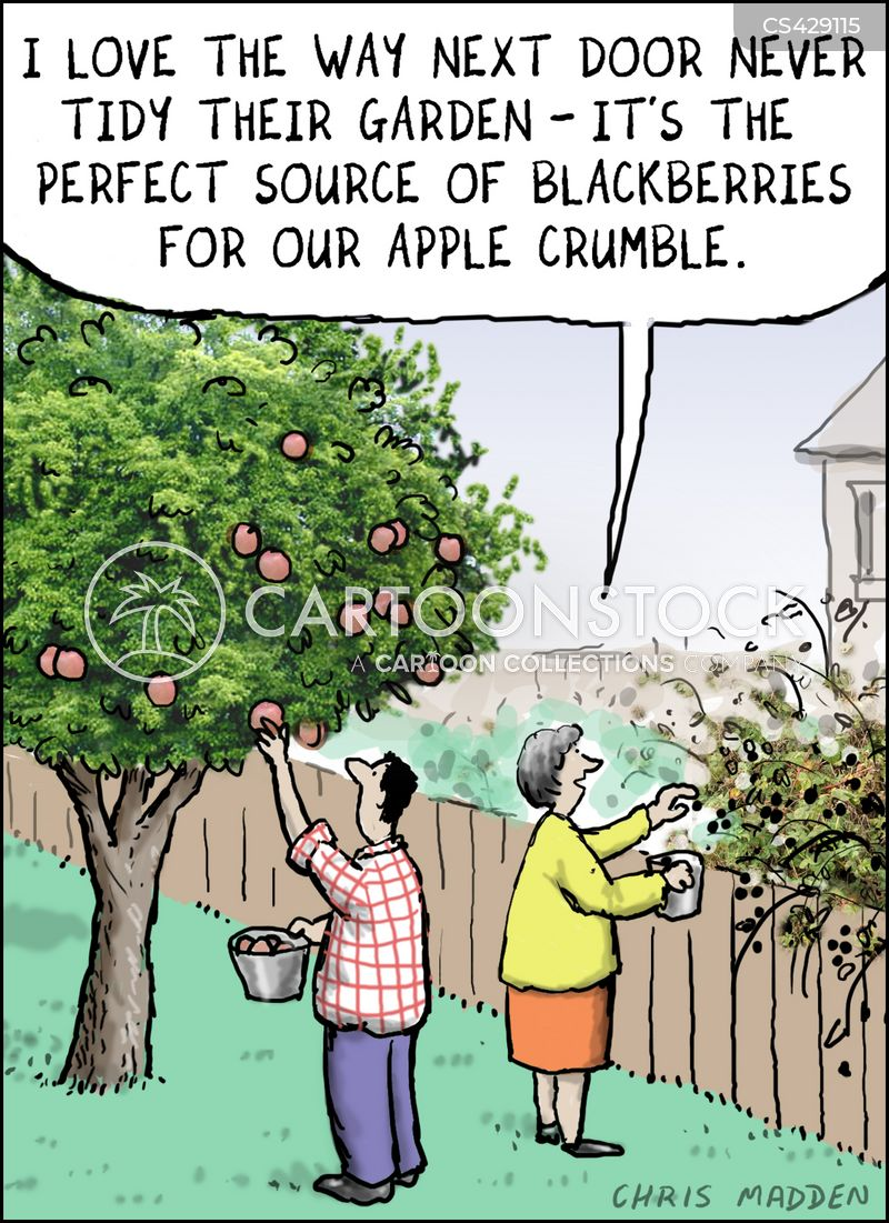 Fruit Pickers cartoons, Fruit Pickers cartoon, funny, Fruit Pickers picture, Fruit Pickers pictures, Fruit Pickers image, Fruit Pickers images, Fruit Pickers illustration, Fruit Pickers illustrations