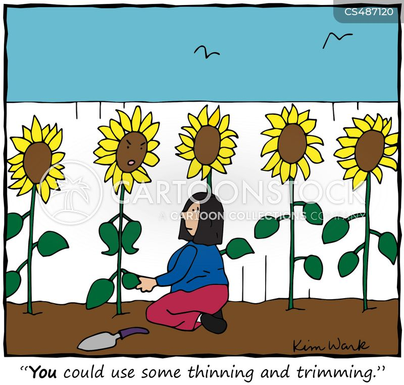 thinning cartoon