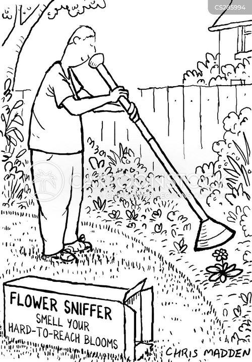sniffer cartoon