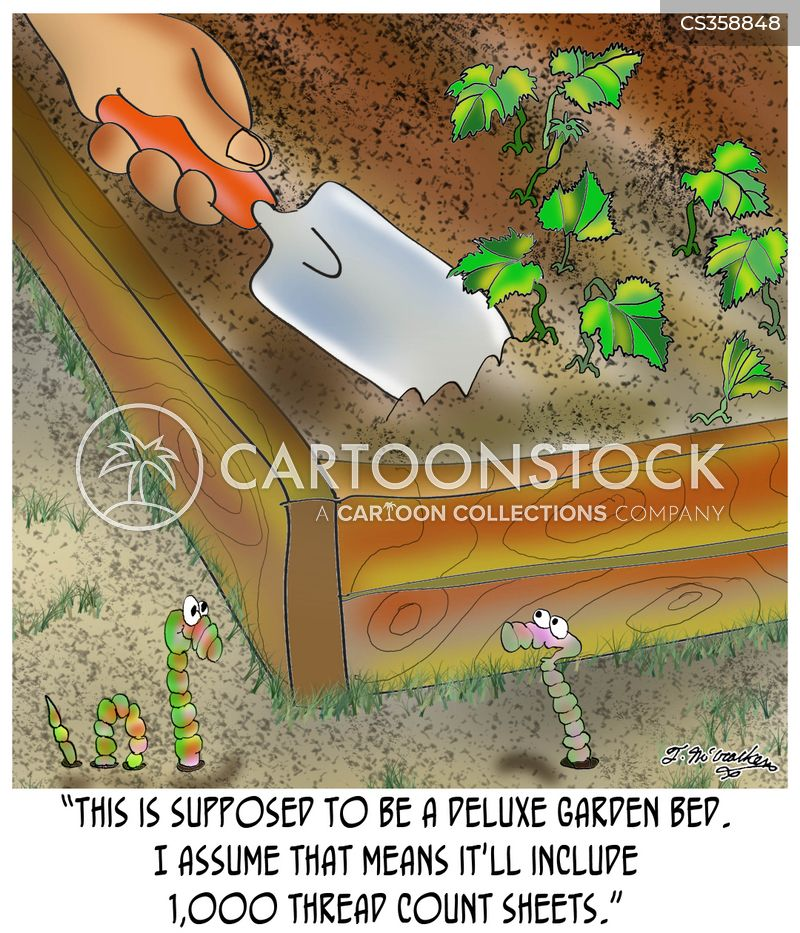 garden bed cartoon