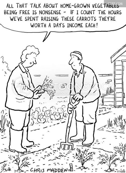 home grown cartoon