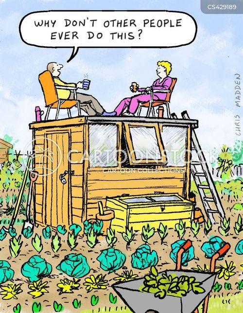 allotments cartoon