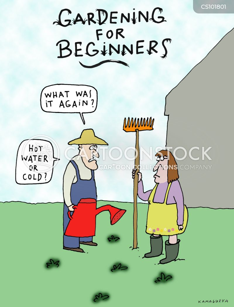 beginners cartoon