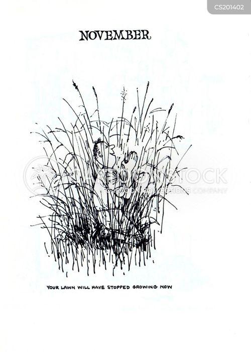 garden maintenance cartoon