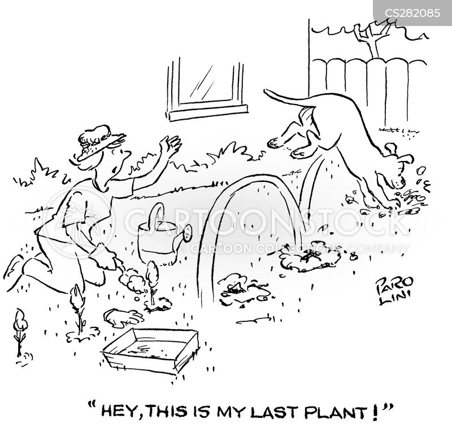 dig up plants cartoon