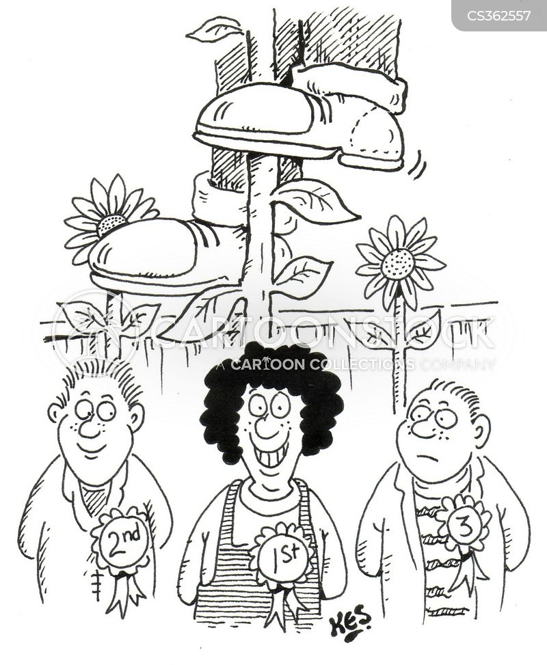 prize winning cartoon