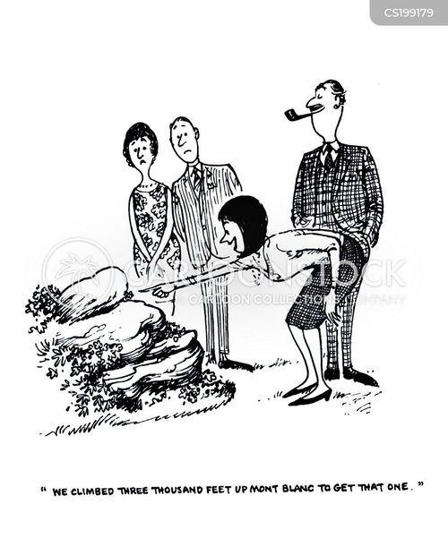 thelwell cartoon