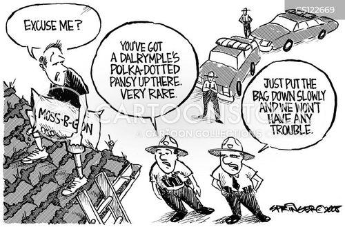 roofers cartoon