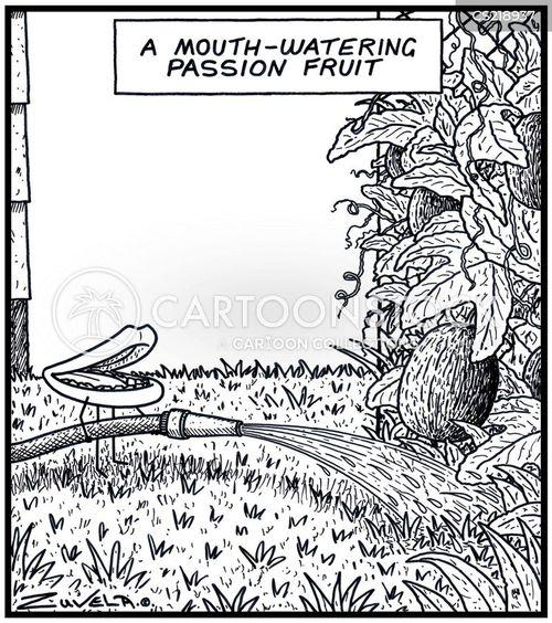 sprinkle cartoon