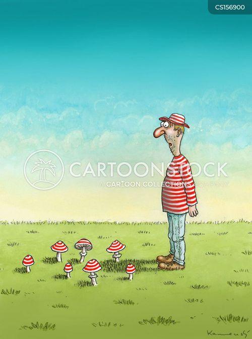 mushroom picker cartoon