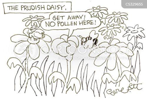 wild flower cartoon