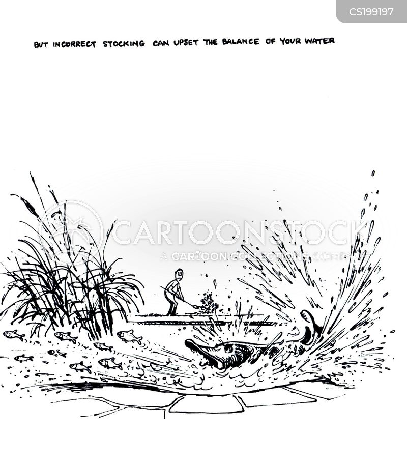 water features cartoon