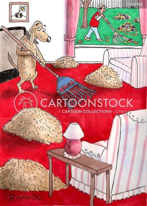 rakers cartoon