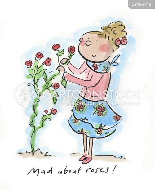 rose gardens cartoon