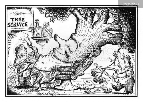 pruned cartoon