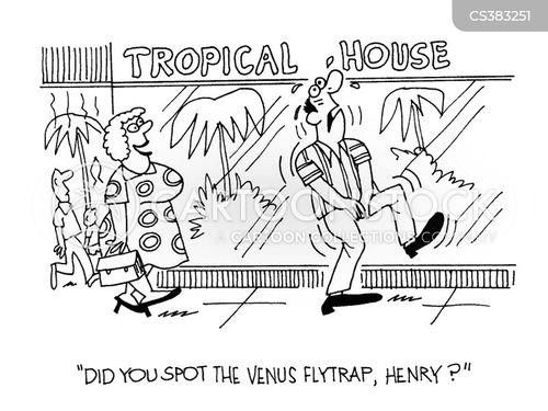 venus flytrap cartoon