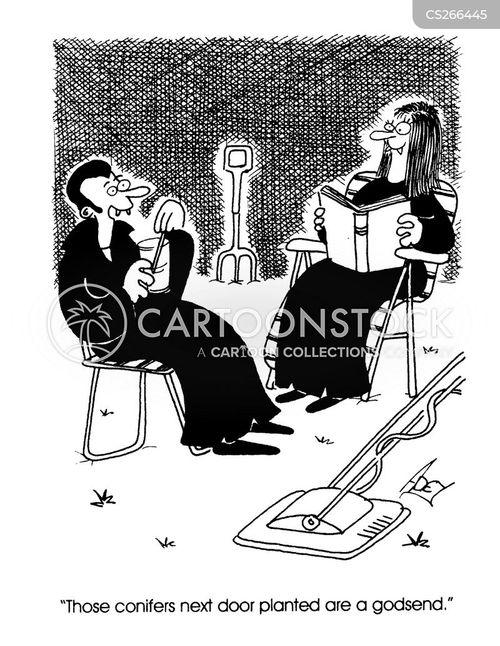 conifers cartoon
