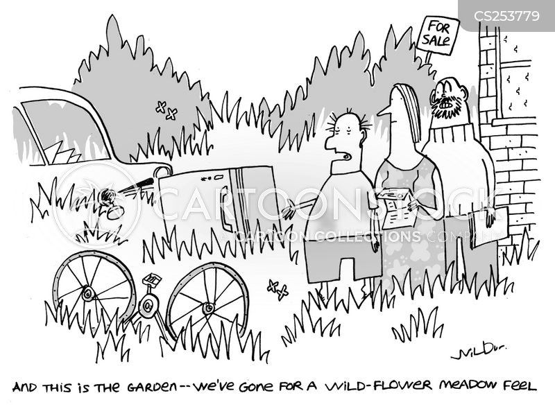 meadow cartoon