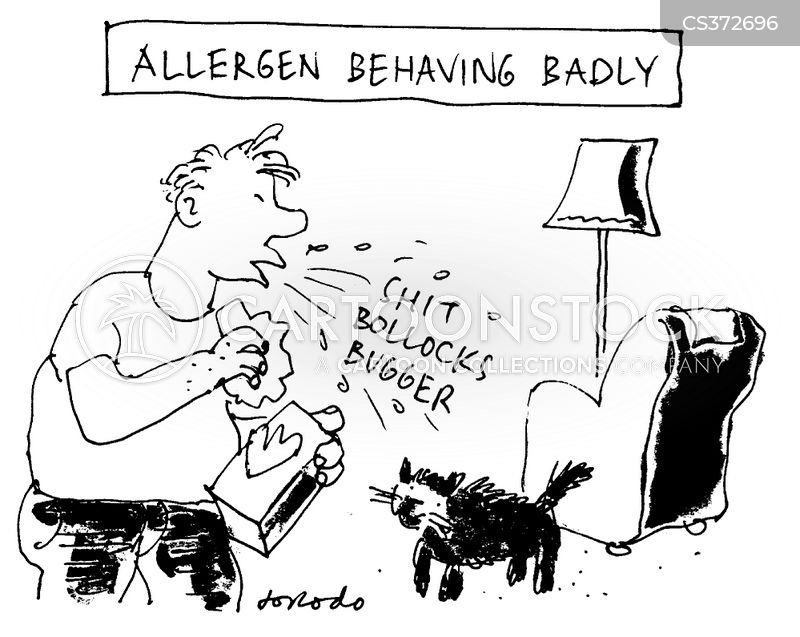 cat allergy cartoon