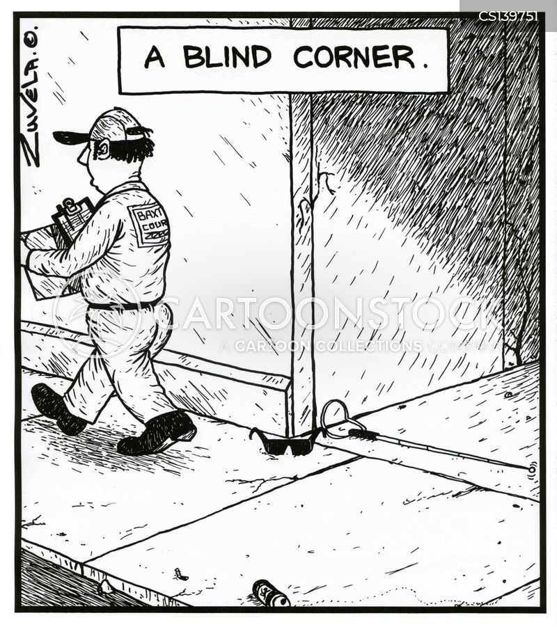 blind spots cartoon