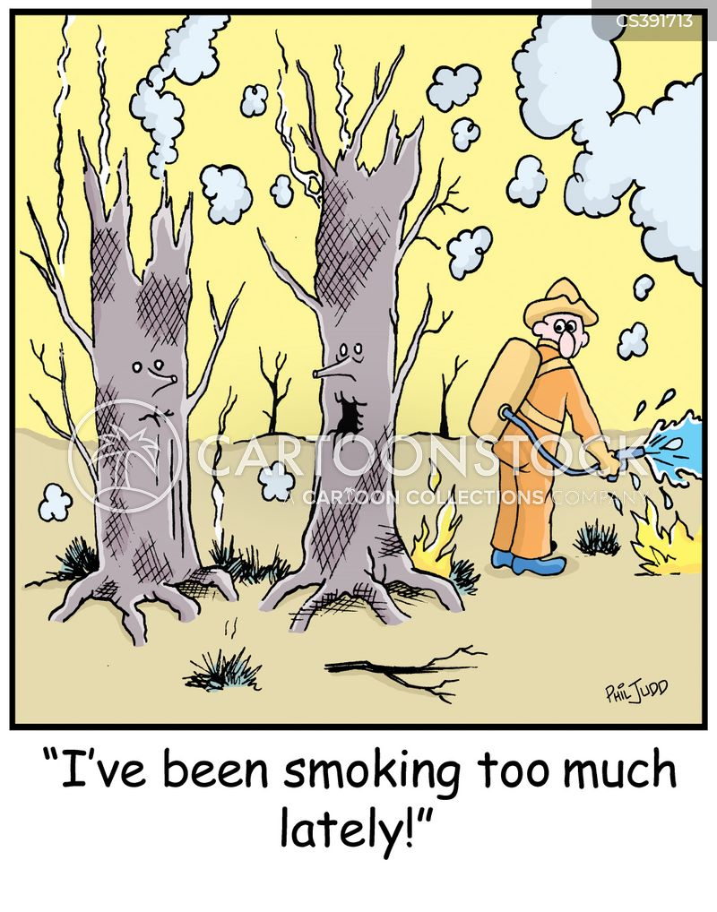 bushfire cartoon