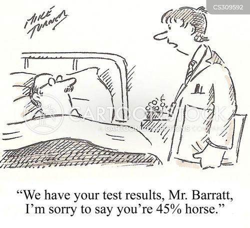 horse-meat scandal cartoon