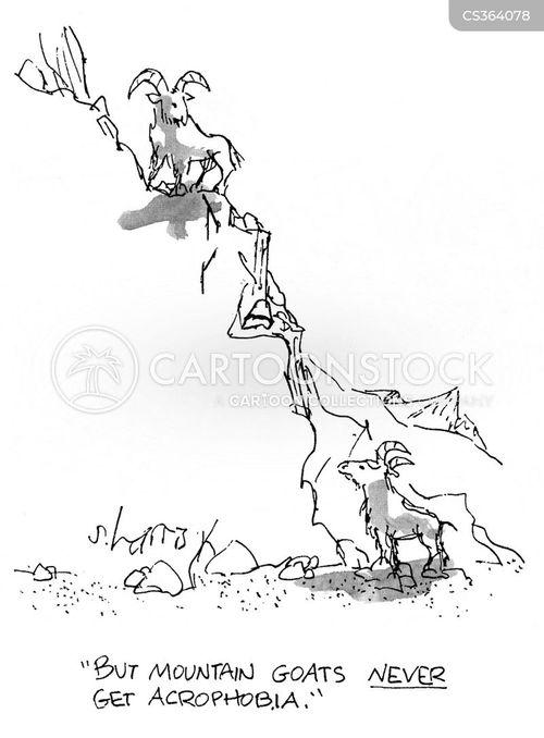 occupational hazards cartoon