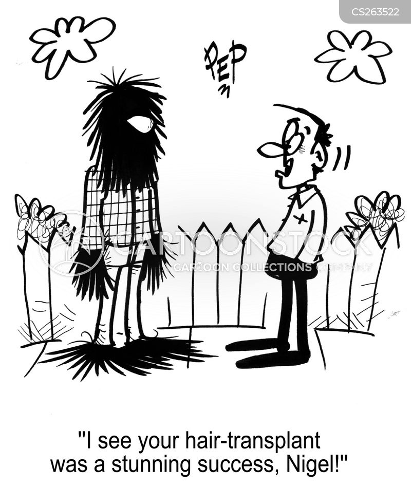 premature hair loss cartoon