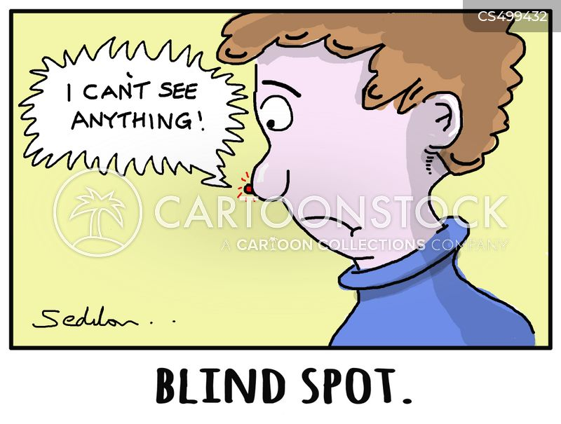 blindspot cartoon