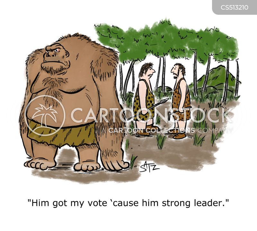 trump 2020 cartoon