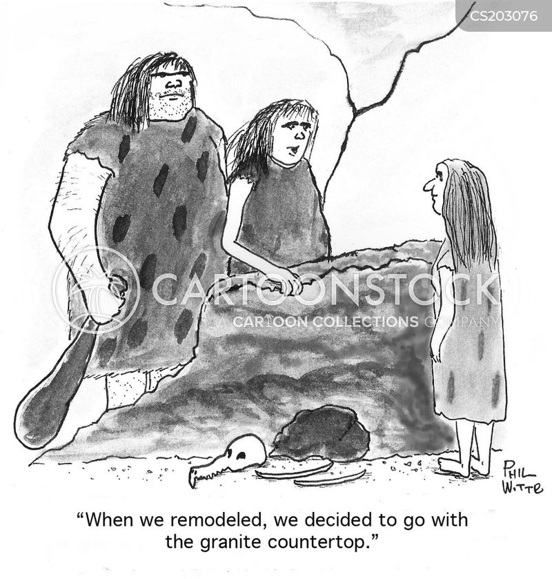 remodel cartoon