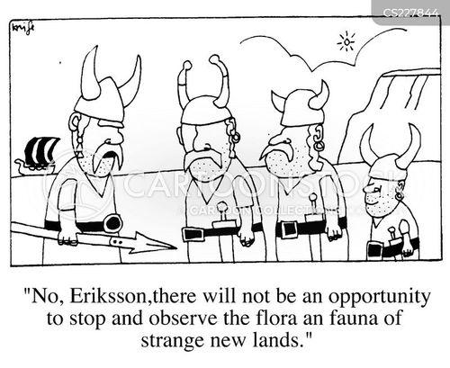raider cartoon