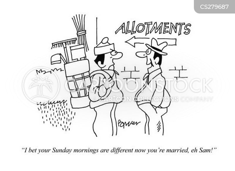 sunday mornings cartoon