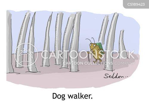 flea cartoon