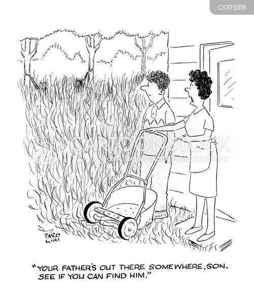 land mowers cartoon