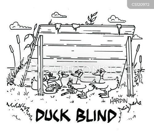 duck blinds cartoon