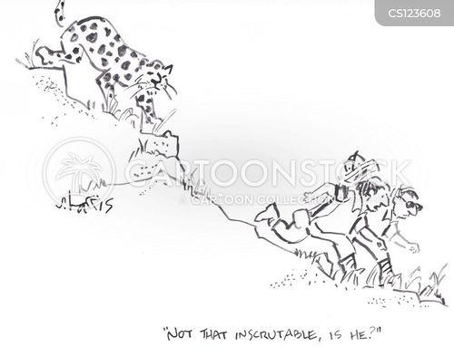 inscrutable cartoon