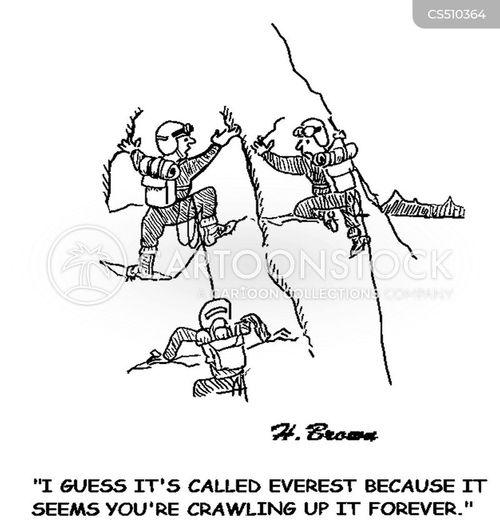 mt. everest cartoon