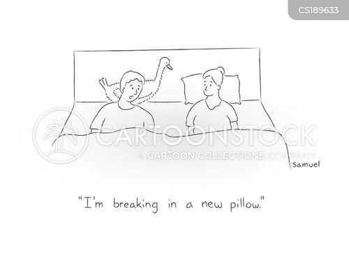 pillows cartoon
