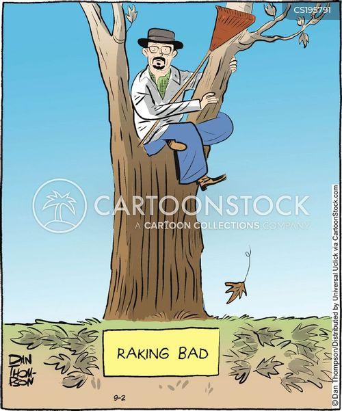 rakes cartoon